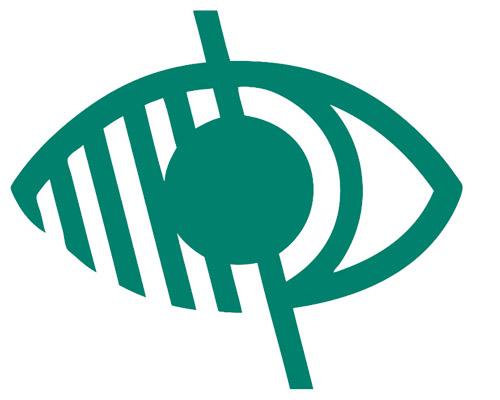 Logo Handicap Visuel Vert