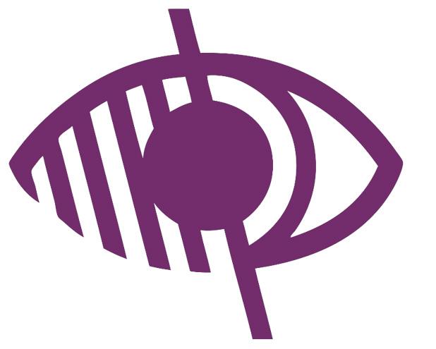 Logo Handicap Visuel Violet